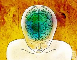 The benefits of meditation: Neuroscientists explain why the practice helps tune out distractions and relieve pain