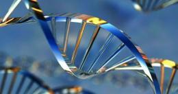 Scientists unlock genetics of joint disorder ankylosing spondylitis