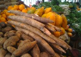 Cassava - not always so healthy