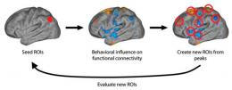 Delayed brain development responsible for juvenile offender behavior