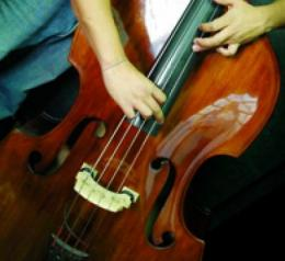Musical activity may improve cognitive aging