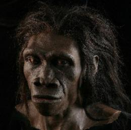 Sexual selection by sugar molecule helped determine human origins