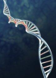 Sequencing of 500 genomes brings personalised medicine closer