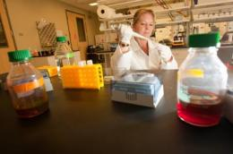UH researchers explore treatments for breast and colon cancers