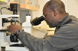 Researchers discover new HIV vaccine-related tool