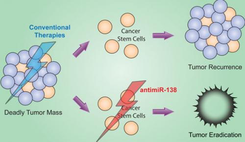 Potential drug for treating deadly brain cancer