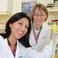 Cancer treatment discovery opens tumours to immune cells