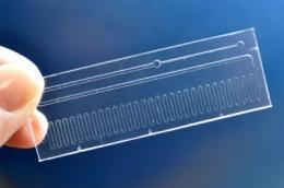 Boston University researchers develop microfluidic chip to stem flu outbreaks