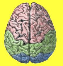 Drug 'reduces implicit racial bias,' study suggests