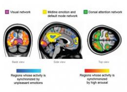 Feeling strong emotions makes peoples' brains 'tick together'