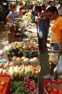 Food stamp customers buy more at farmers' markets when point-of-sale system is available