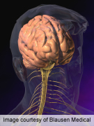 Less alzheimer's pathology with angiotensin receptor blocker use