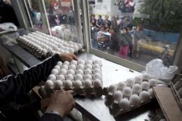 Mexico scrambles to cope with egg shortage