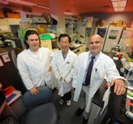 Neuron-nourishing cells appear to retaliate in Alzheimer's
