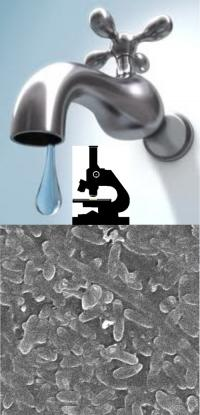 New automated system to kill bacteria in hospital water systems and taps