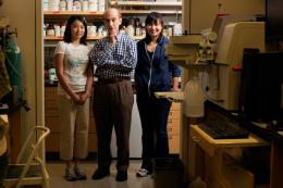 New drug candidate shows promise against cancer