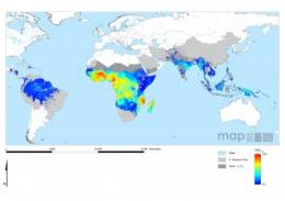 New malaria maps to guide battle against the disease