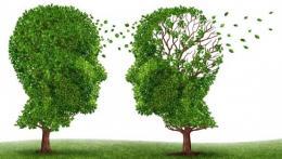 Physical sciences illuminate neurodegenerative diseases