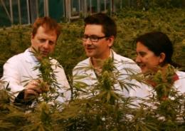 Previously undiscovered cannibis compound could lead to improved epilepsy treatment