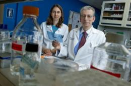 Rhode Island Hospital studies uncover keys in sudden cardiac death