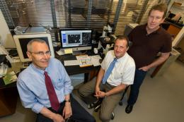 Solving the puzzle of drug-induced liver injury