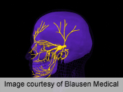 Some face transplant patients may regain sensory, motor function