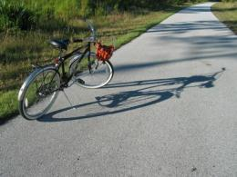 Study prompts safety precautions for cyclists