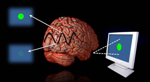 The beat goes in the brain: Visual system can be entrained to future events
