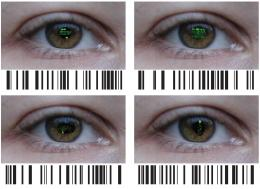 Transcriptional barcoding of retinal cells identifies disease target cells
