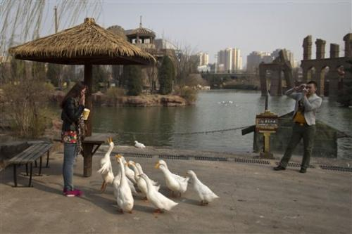 China bird flu mutates, might infect mammals