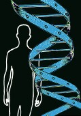 Gene variants may play role in obesity