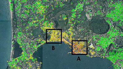 Identifying Alzheimer's using space software