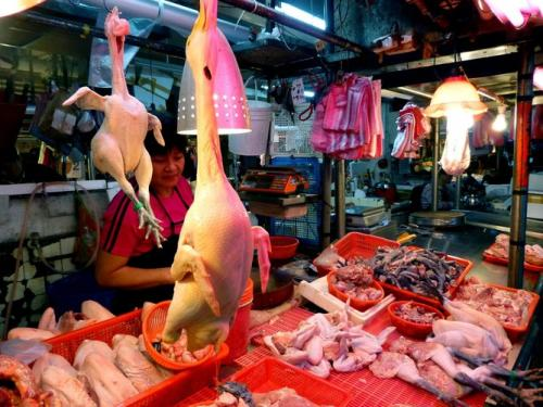 No evidence H7N9 spreads between humans--but fear does