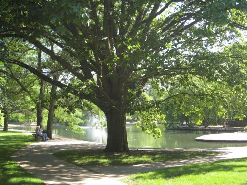 Park amenities differ according to income of neighborhoods
