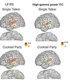 Solving the 'Cocktail Party Problem': How we can focus on 1 speaker in noisy crowds