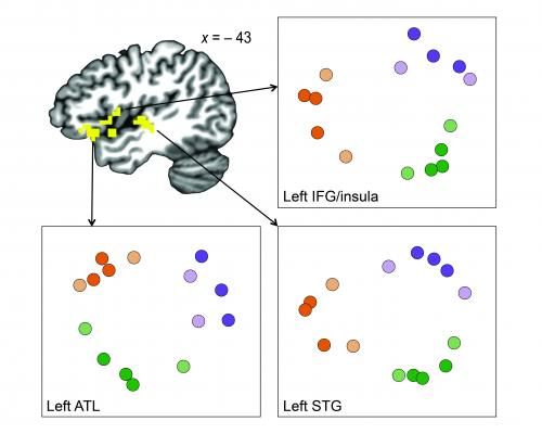 Subconscious mental categories help brain sort through everyday experiences
