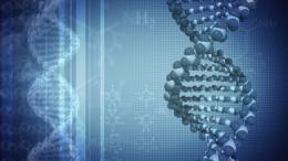 Scientists find way to predict and control gene expression