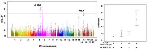 Identification of two novel susceptibility genes to Takayasu Arteritis