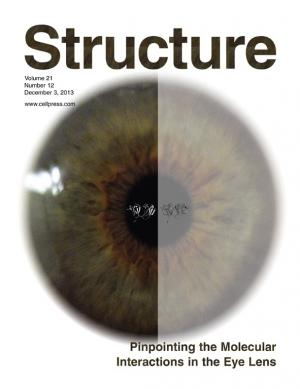 How our vision dims: Chemists crack the code of cataract creation
