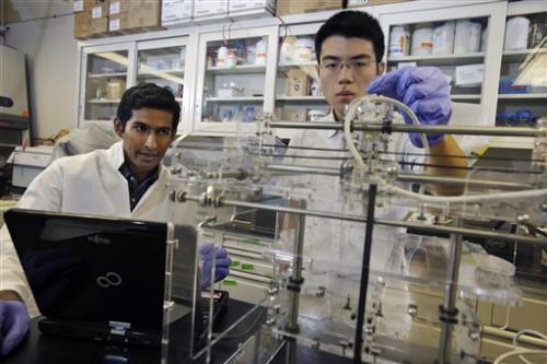 US researchers create 'bionic ear'