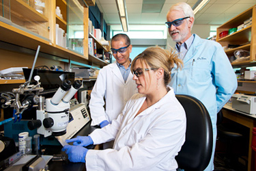 Researchers discover a biological link between diabetes and heart disease