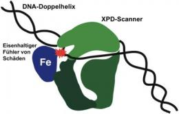 A scanner for hereditary defects