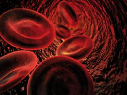 Blood cell breakthrough could help save lives