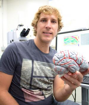 Brain damage control: Scientists make big steps toward blocking the detrimental aftermath of stroke