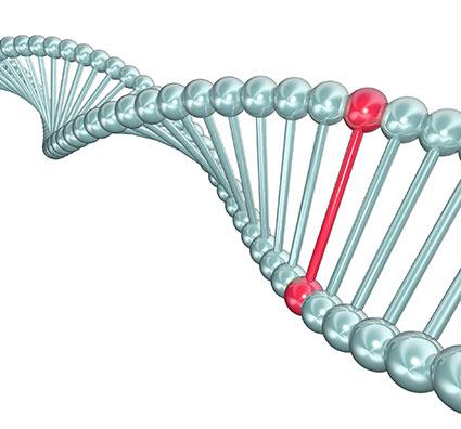 Changes in gene explain more of inherited risk for rare disease