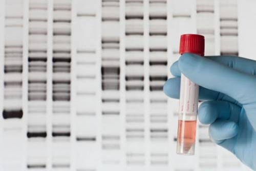 Direct-to-consumer genetic testing kits vary in predictions of disease risk