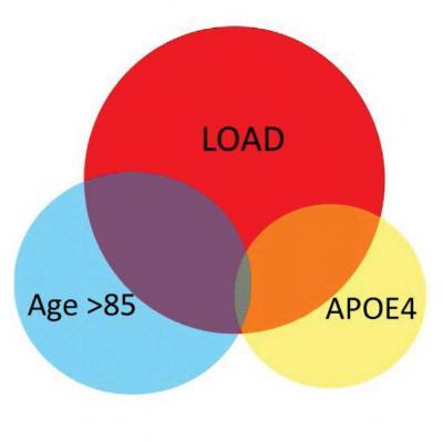 Key molecular pathways leading to Alzheimer's identified