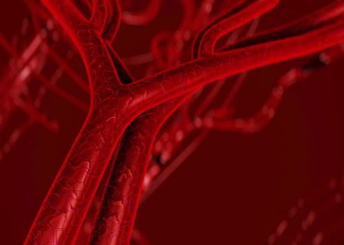 Key regulator of blood vessel formation could be a potential new target for cancer drugs