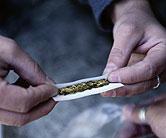 Majority of americans now favor legalizing marijuana