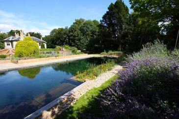 Natural swimming pools also get contaminated